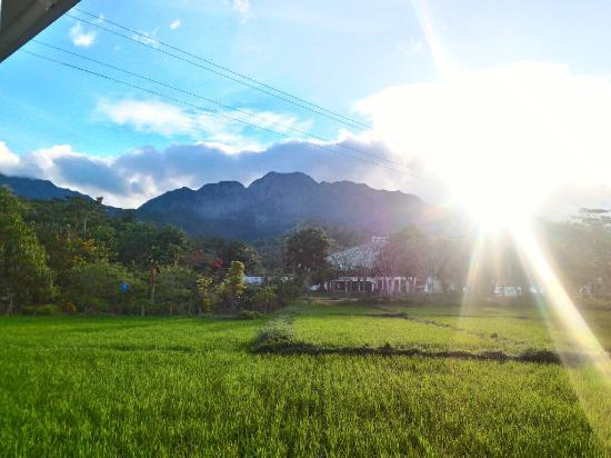 Visayas State University: Majestic Mt. Pangasugan