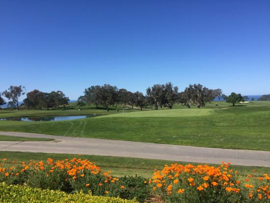 beautiful peaceful place picture of the lodge at torrey pines rh tripadvisor com