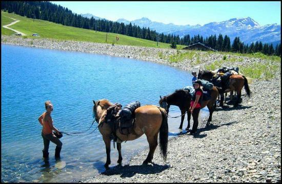 La Ferme Equestre du Chozal