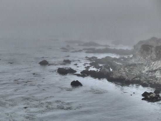 Albion, CA: Mendocino Coast