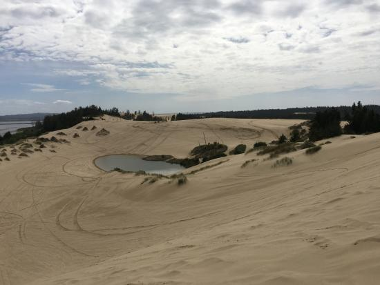 North Bend, OR: What the dunes look like