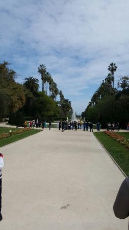 الجزائر العاصمة, الجزائر: Le Jardin d'Essai du Hamma