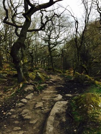 Peak District National Park, UK: photo3.jpg
