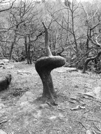 Peak District National Park, UK: photo5.jpg
