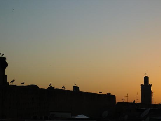 Riad Assalam: Terrasse