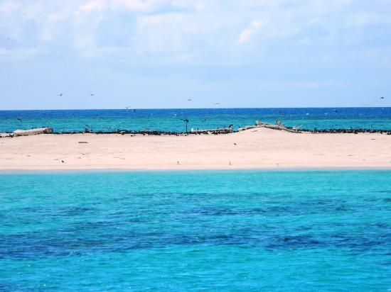 Michaelmas Cay