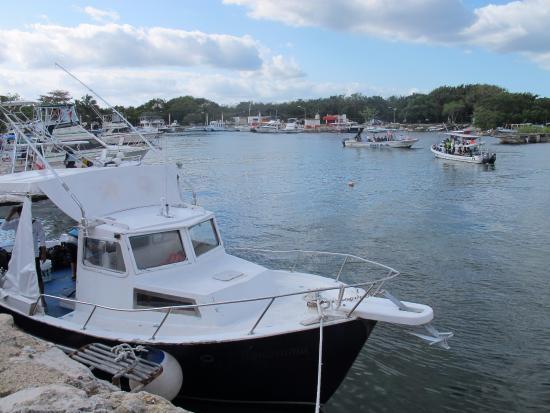 Aquatic Sports : The boat