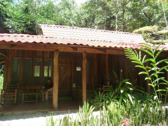 Esquinas Rainforest Lodge: Schöne Terrasse mit Ausblick in die Natur