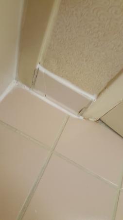 Holiday Inn Gainesville University Center: Broken molding tiles