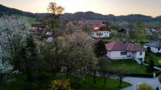 Reiterhof Pichler