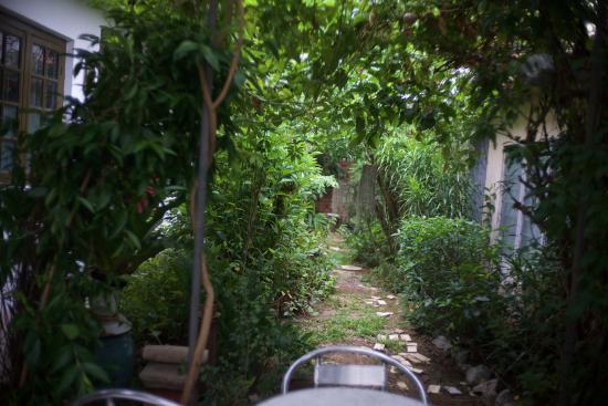 Cyclamen Cottage : Rear garden