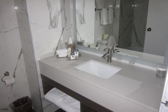 DoubleTree by Hilton Hotel Gatineau-Ottawa: Bath