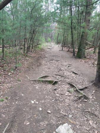 Callahan State Park : Earth Day hike 2016