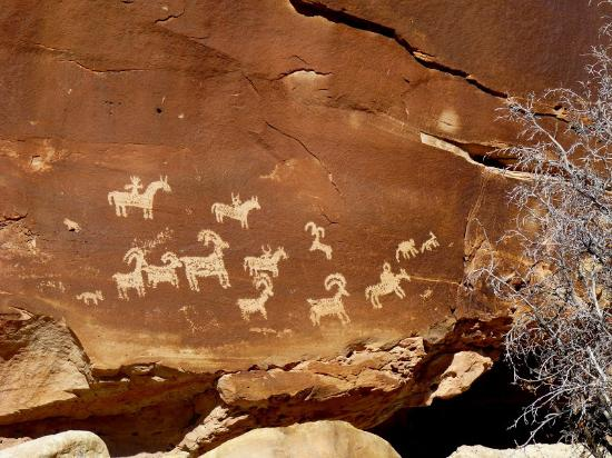 Morris' Last Resort: Petroglyphs at Wolfe Ranch