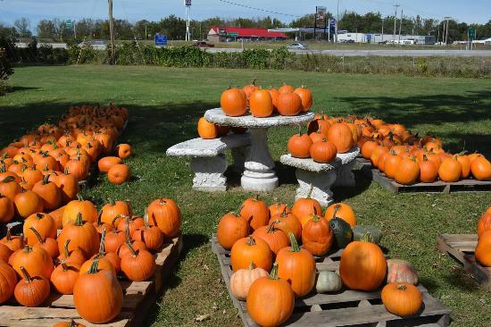 Centerville, IN: Warm Glow Candle Company
