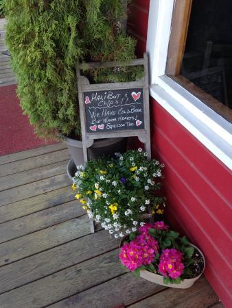 Testy Chef Cafe