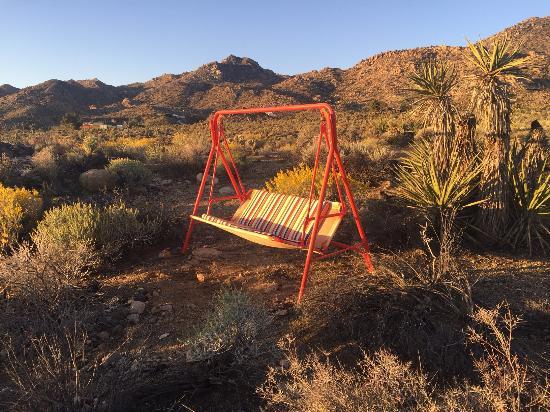 Joshua Tree, CA: Sweet little spot for watching the sunrise