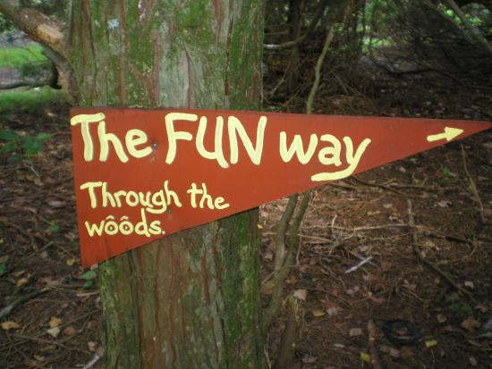 Whitianga, نيوزيلندا: Fun for everybody