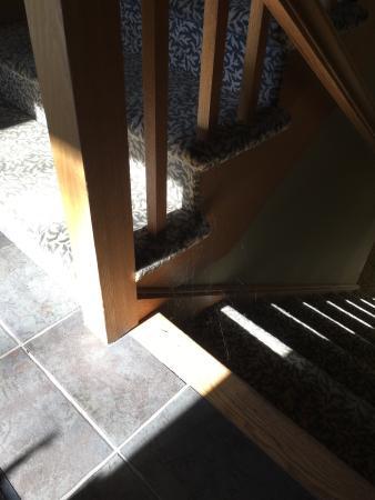 Minnewaska Lodge: photo0.jpg