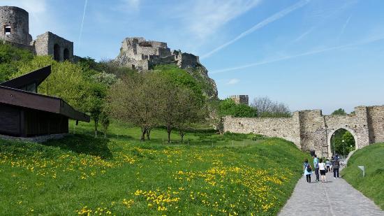 Castelo de Devín Foto