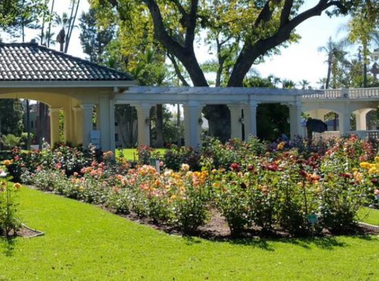 @ Wrigley Gardens 13
