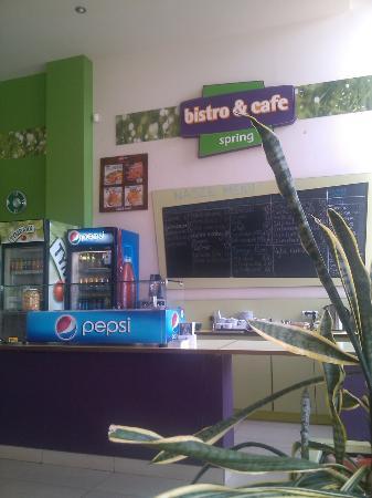 Spring Bistro & Cafe