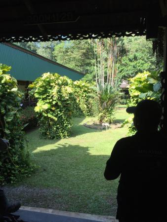 Kinabatangan District, Malasia: photo8.jpg