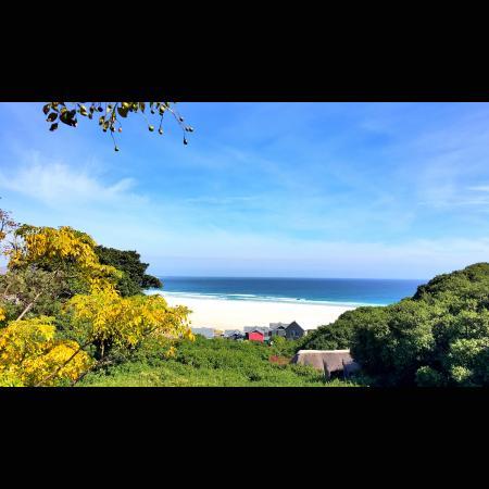 Monkey Valley Resort Foto