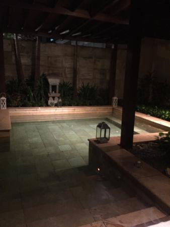 the plunge pool of the spa room picture of the ritz carlton rh tripadvisor in