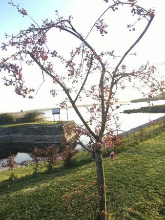 Dromod, Irlanda: Some amazing views at Harkin's