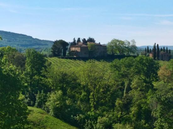 Salvadonica - Borgo Agrituristico del Chianti: P_20160421_091213_HDR_large.jpg