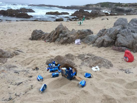 Asilomar State Beach: Thoughtless visitors leaving there empties