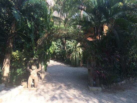 Bilde fra Pachamama Tropical Garden Lodge