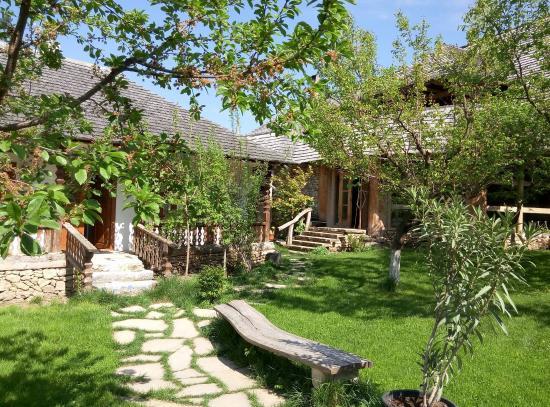 Eco-Resort Butuceni: Rooms & Reception