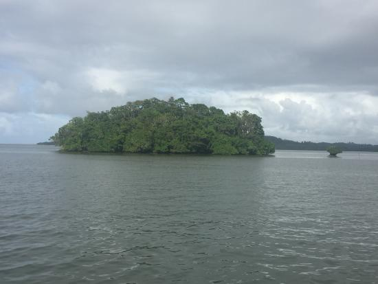 Lami, Fiyi: photo1.jpg