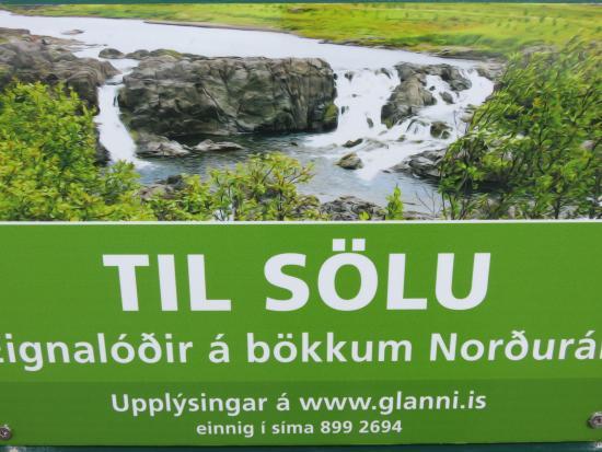 Husafell, Islandia: Stunning beauty!