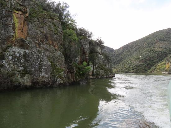 Aldeadávila de la Ribera, España: Abundante vegetación