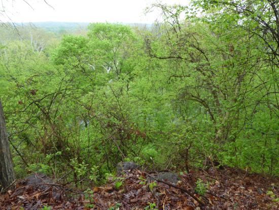 Ball's Bluff Battlefield Regional Park: Bluff Overlook