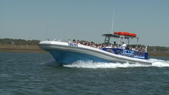 Blue Wave Adventures The Best Dolphin Watch And Ocean Sightseeing Cruise In Myrtle Beach