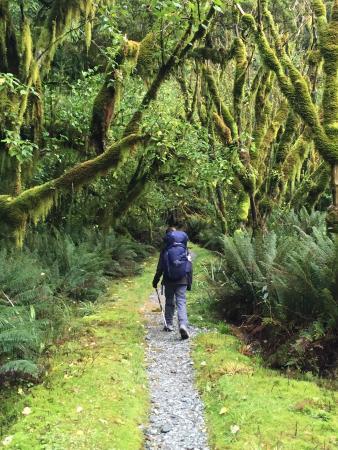 Fiordland National Park, นิวซีแลนด์: photo3.jpg