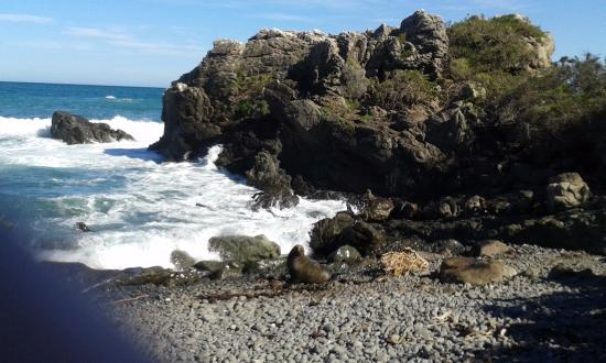 Wairarapa, Selandia Baru: The road to Cape Palliser