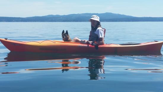 Kayak Brinnon is dog friendly!