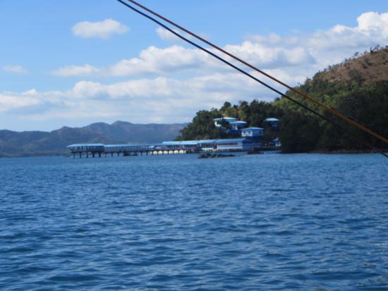 20160311 061707 Hdr Picture Of Coron Underwater Garden Resort Coron Tripadvisor