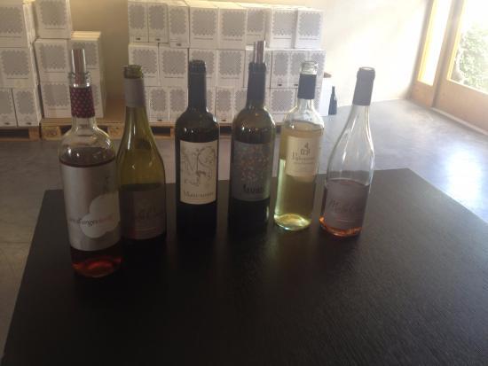 Canet, France : La dégustation des vins