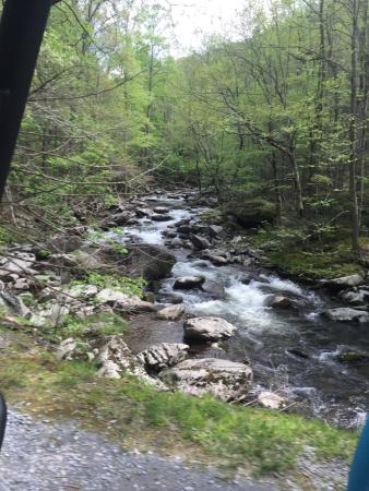 Townsend, TN: photo3.jpg