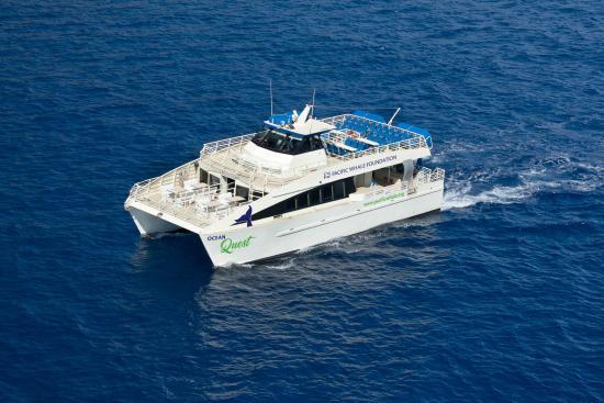 Maalaea, Hawái: We have a fleet of nine vessels providing award winning eco-cruises from Maui, Hawaii.