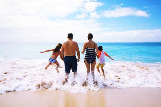 Ohana Island Tours