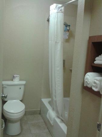 Foto de Quality Inn & Suites Six Flags Area