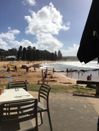 Avoca Beach, Australien: photo2.jpg