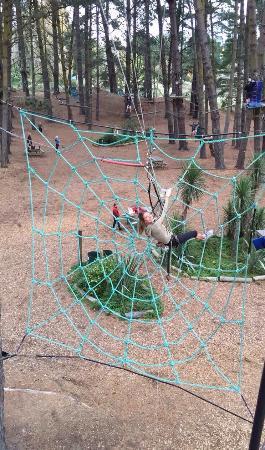 Adrenaline Forest: photo0.jpg